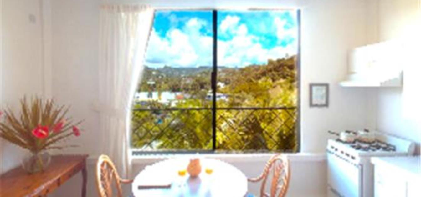 vacation-rentals/st-vincent-and-the-grenadines/st-vincent/india-and-villa-bay/breezeville-apartments