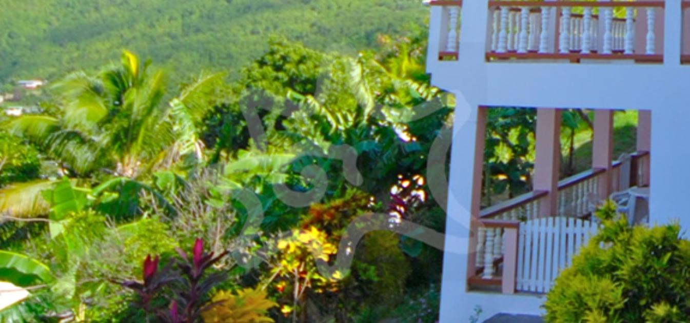 vacation-rentals/st-vincent-and-the-grenadines/bequia/belmont/the-view-(lower)-bequia