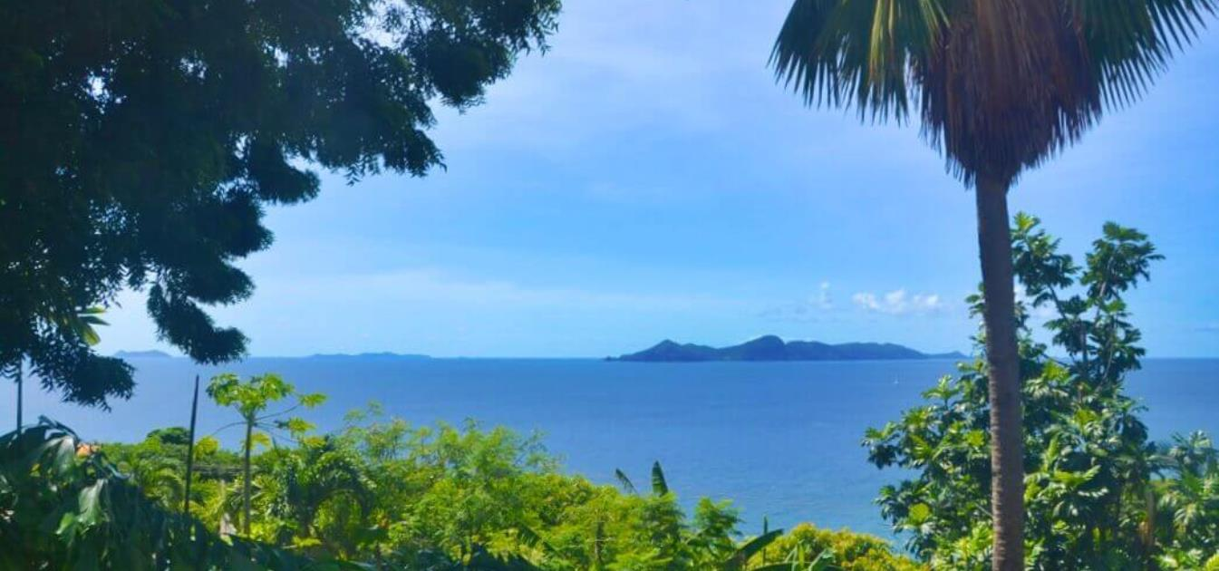 vacation-rentals/st-vincent-and-the-grenadines/st--vincent/prospect/tropical-island-cottage
