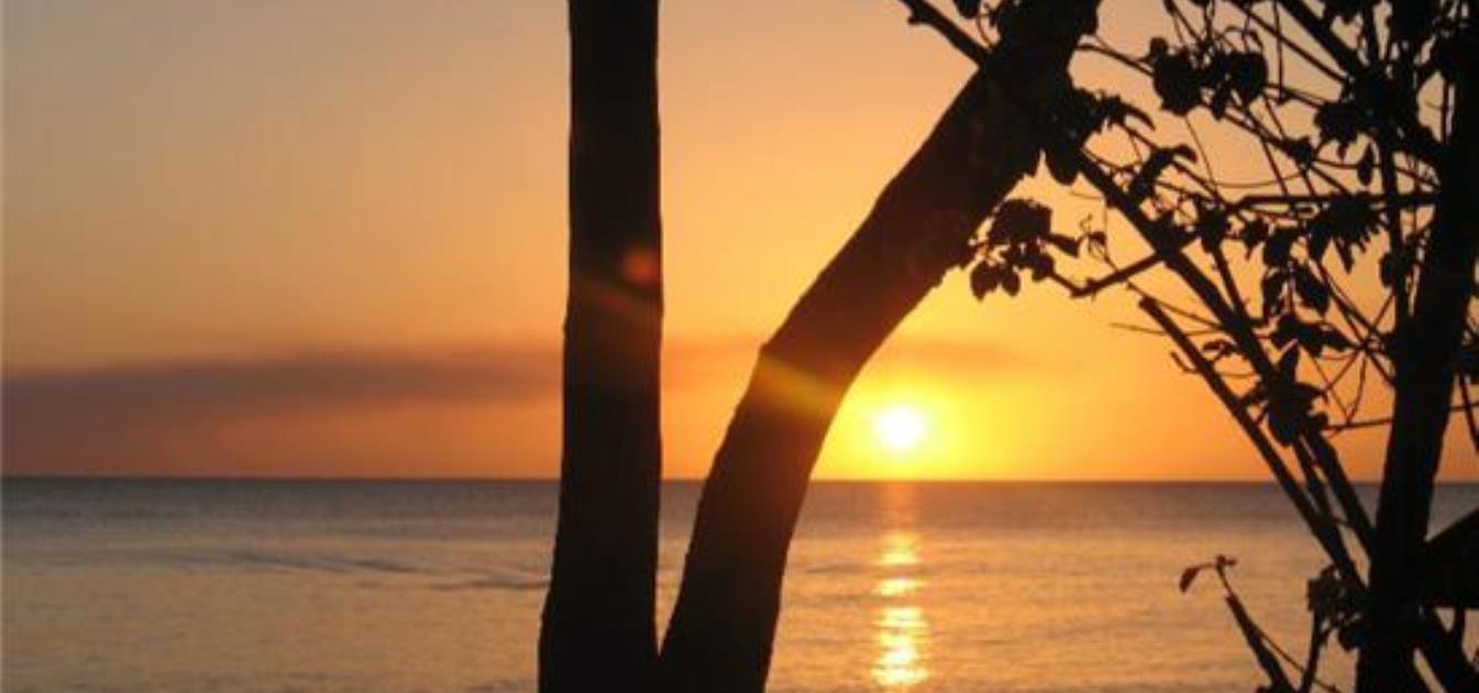 vacation-rentals/barbados/barbados/st-james/sweet-breeze