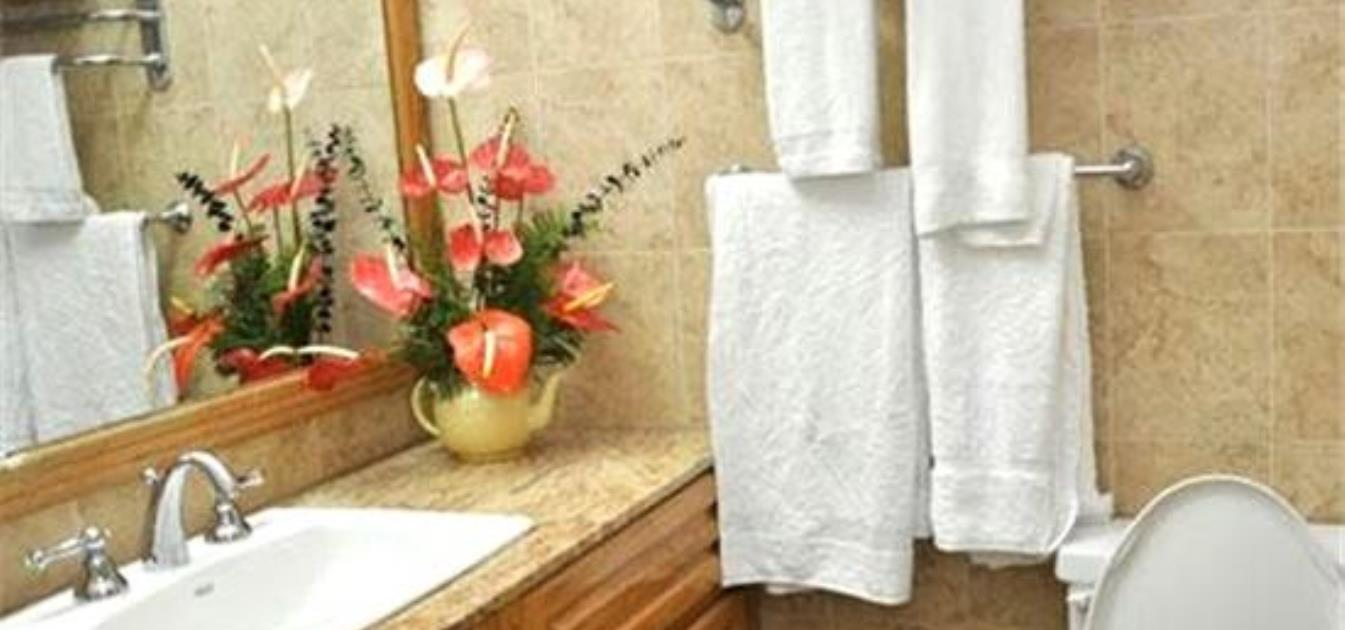 vacation-rentals/st-vincent-and-the-grenadines/st-vincent/kingstown/cobblestone-inn