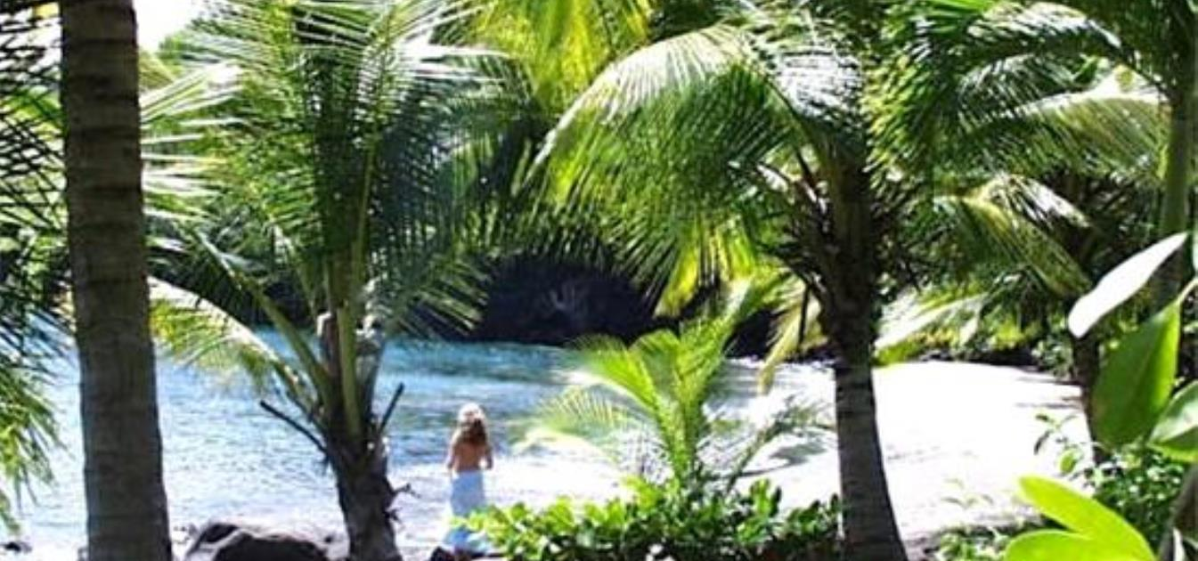 vacation-rentals/st-vincent-and-the-grenadines/st-vincent/kingstown/o'garro's-apartment