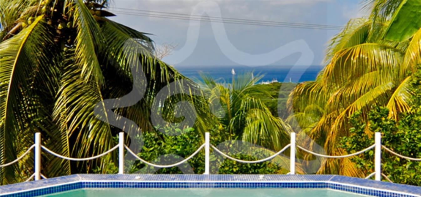 vacation-rentals/st-vincent-and-the-grenadines/bequia/belmont/orchard-apartment