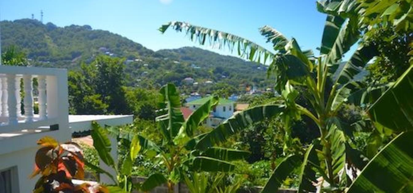 vacation-rentals/st-vincent-and-the-grenadines/bequia/port-elizabeth/starfish-lower-studio-apartment