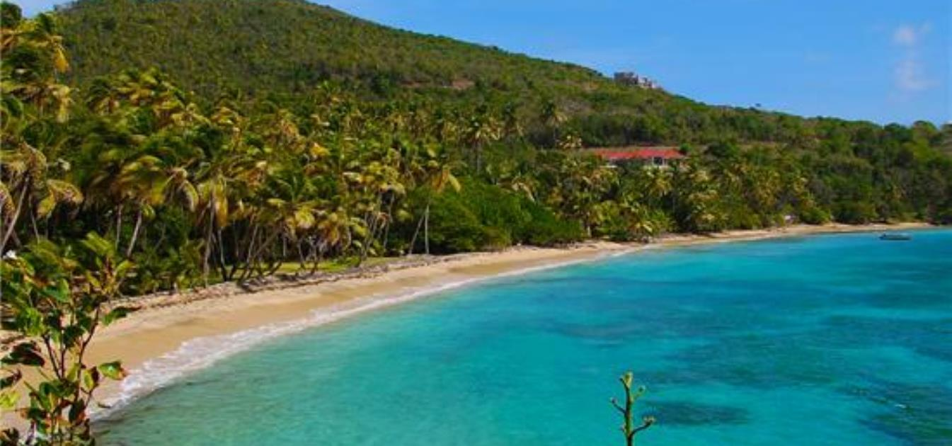 vacation-rentals/st-vincent-and-the-grenadines/bequia/spring/the-golden-palm-tropical-villa