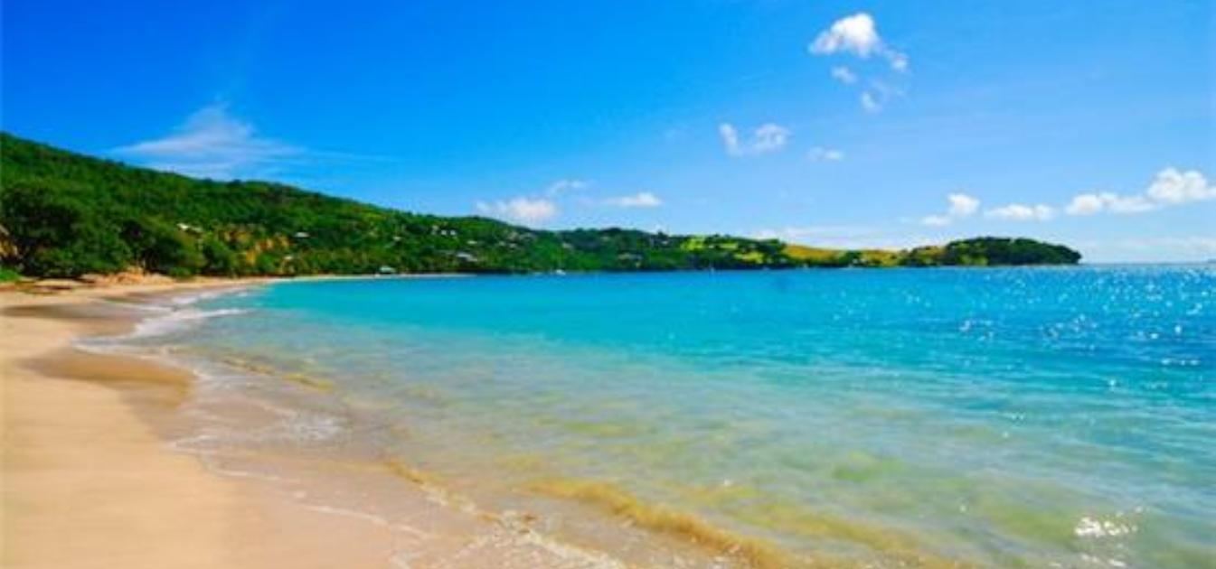 vacation-rentals/st-vincent-and-the-grenadines/bequia/friendship-bay/friendship-bay-villas-apt-a1