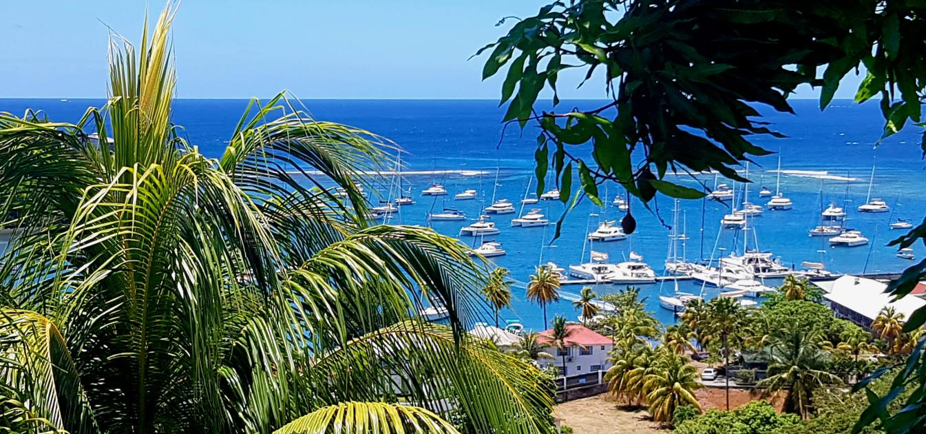 vacation-rentals/st-vincent-and-the-grenadines/st--vincent/ratho-mill/moonwater-garden-mango-cottage