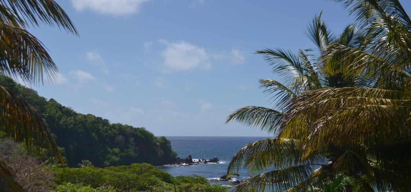 vacation-rentals/st-vincent-and-the-grenadines/st-vincent/brighton/artist-ocean-reflection-villa