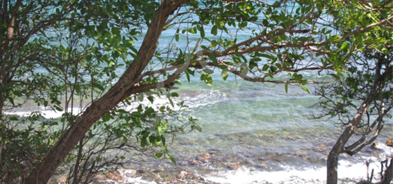 vacation-rentals/st-vincent-and-the-grenadines/bequia/la-pompe/la-luna-azul-upper