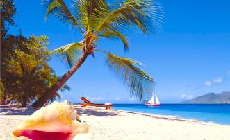 Sea Grape Suite Palm Island Resort